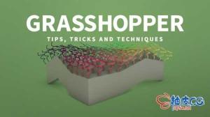 犀牛Rhino Grasshopper蚱蜢插件应用技术技巧训练视频教程