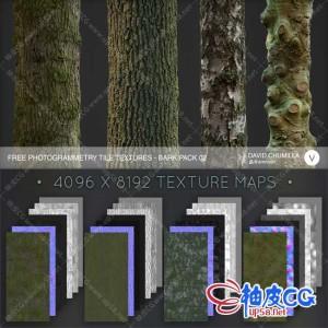 树木表皮4K / 8K高清无缝材质贴图素材