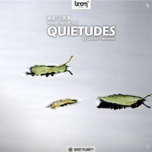宁静热带森林草原湿地瀑布河流蟋蟀昆虫鸟类青蛙 WAV无损音效素材 + 中文名称参照