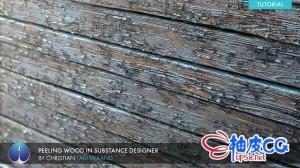 Substance Designer创建真实剥皮木材纹理视频教程