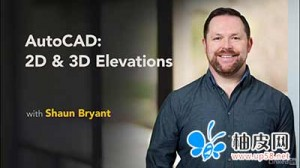 AutoCAD 2D&3D立面图视频教程