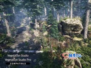 丛林树木植物环境3D模型Unity游戏素材资源