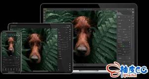 专业照片编辑软件Adobe Photoshop Lightroom CC 3.1.0 x64 多语言破解版