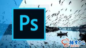 Photoshop平面视觉设计终极培训视频教程