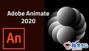 Adobe动画制作软件Adobe Animate 2020 v20.5.0.29329 x64 中文 / 英文破解版