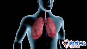 香烟烟雾污染肺部的动态mov视频素材