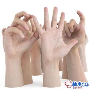 11种各种手势的高品质3D模型