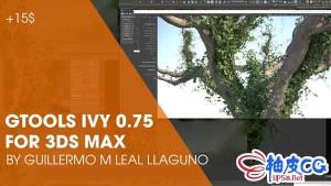 3DSMAX植物常青藤成长插件Gtools Ivy Generator 0.75 3ds Max 2018-2021