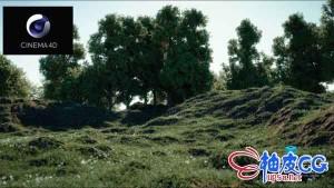 树木植物岩石地质插件Forester for C4D R20 ~ R21