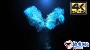 AE模板 优雅蝴蝶翅膀抖动粒子扩散标识LOGO展示片头 FlyingButterflyLogoReveal_mainComp
