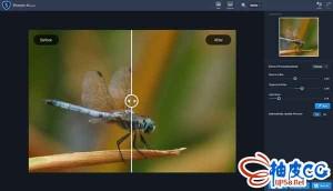 AI照片清晰锐化软件Topaz Sharpen AI 2.1.4 x64