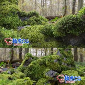 C4D / Blender / FBX / OBJ游戏风格岩石苔藓植物3D模型
