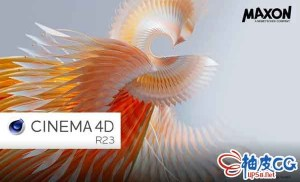 三维设计软件MAXON Cinema 4D R23.008 WIN 中英文破解版