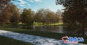 30个3DSMAX  / C4D / VRay树木植物精细3D模型