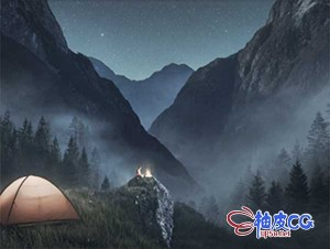 Photoshop照明粒子闪电灰尘烟雾鸟类树木高质量PS笔刷套装
