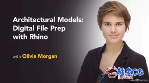 犀牛Rhino模型创建到3D打印实操视频教程