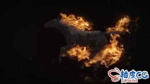 AE模板 烈火燃烧黑马奔跑标志LOGO揭示 Flamming Horse Logo Reveal