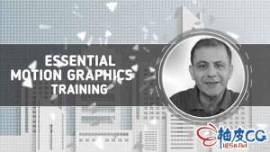 AE顶级运动图形艺术家最佳技术和方法视频教程