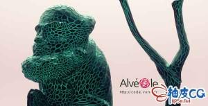C4D R23细胞网状镂空制作插件 Vonc Alveole v1.0.3 + 视频教程