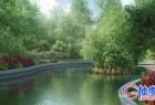 3DSMAX / C4D / MAYA / VRay园林设计树木植物精细3D模型