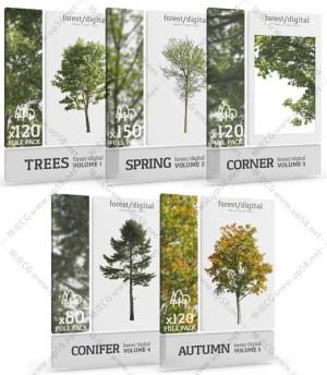 四季树木后期配图PNG透明免扣背景高清图片素材库