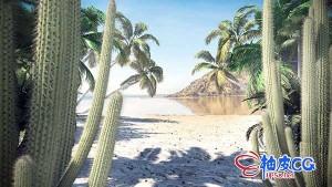 C4D / 3DSMAX / VRay / Corona棕榈树仙人掌热带树木植物3D模型