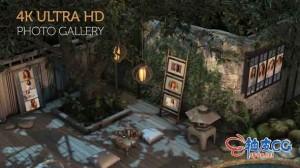 AE模板 午夜3D花园相片相框画廊展示 Photo Gallery in a Garden at Night
