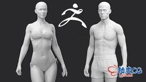 ZBrush数字雕刻三维模型技术训练视频教程