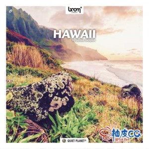 夏威夷海岸波浪风雨声昆虫鸟叫海底鲸鱼声 WAV高品质无损音效素材 + 中文名称参考