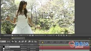 After Effects表达式训练营视频教程