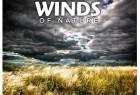 130种自然和建筑环境微风狂风大作WAV高品质无损音效素材 + 中文名称参照