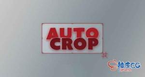 AE插件 合成区域自动裁切 Auto Crop 3.1.3 + 视频教程