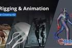 C4D人体骨骼绑定动画视频教程