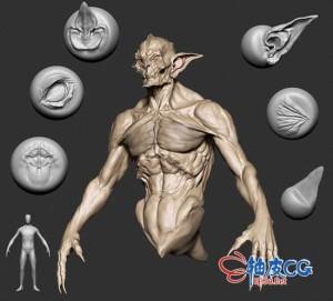ZBrush生物15组基础网格3D模型及170多种精细雕刻笔刷 + 视频教程