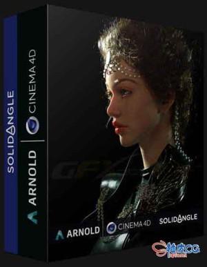 物理渲染器Solid Angle Arnold v3.3.8 for Cinema 4D R25 Win x64 Win