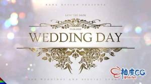 AE模板 颁奖爱情历程结婚庆典照片相册幻灯演示 Wedding