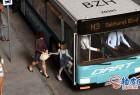 DAZ逼真城市公交车乘客3D模型