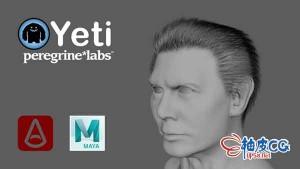 Maya毛皮羽毛工具集 Peregrine Labs Yeti v4.0.3 for Maya 2020-2022